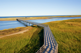 The walkway to a beach in Kouchibouguac National Park.
