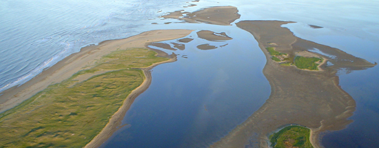 An ariel photo showing part of Kouchibouguac National Park.