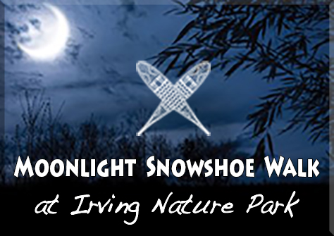 Graphic for the Moonlight Snowshoe Walk at Irving Nature Park