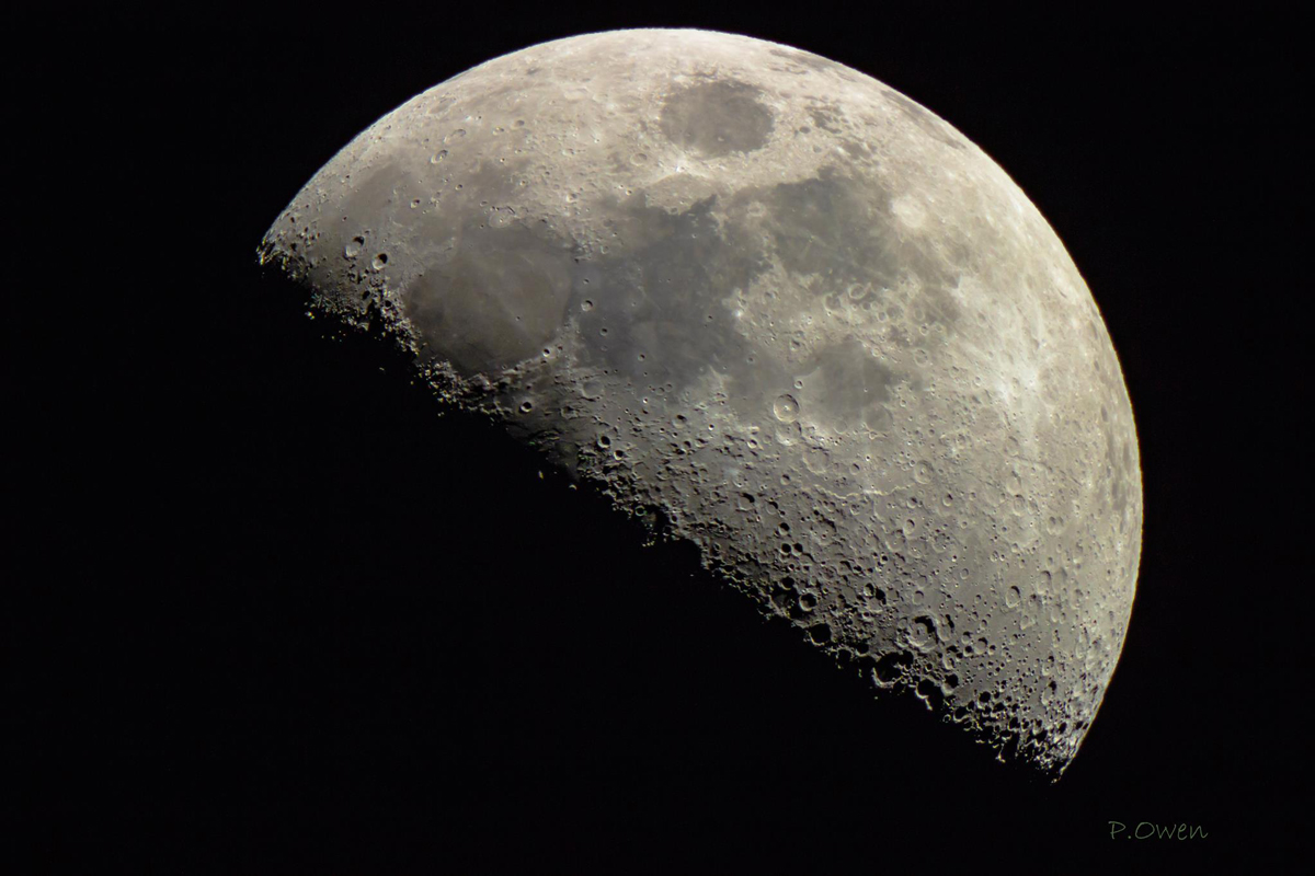 Image of the 1st Quarter Moon by Paul Owen