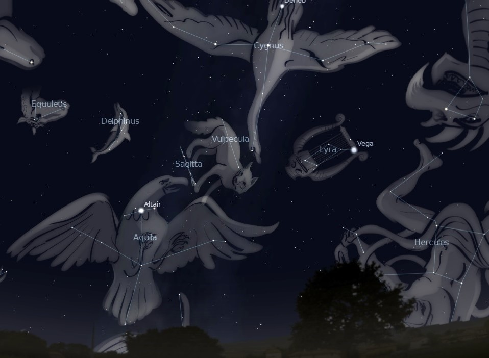 Photo showing the summer constellations in the night sky.