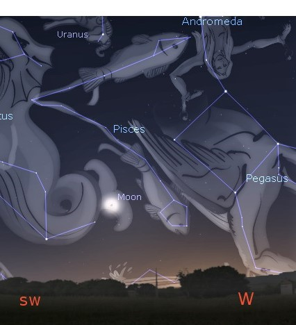 Photo showing the constellation Pisces, low in the west in evening twilight, depicting two fish bound together at the tails.